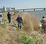 たくさんのボランティアが集まりました…河川敷川岸の清掃活動